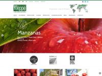Kleppe.com.ar