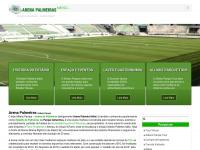 arenapalmeiras.com