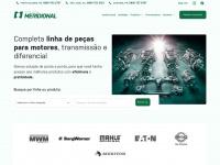 apmeridional.com.br