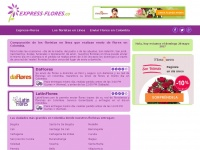 express-flores.co