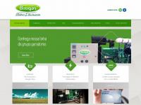 biogasmotores.com.br