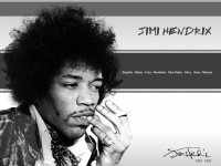 jimihendrix.com.br