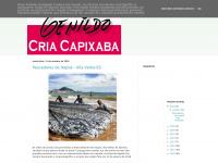 criacapixaba.blogspot.com