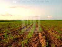 uui.com.br
