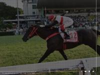jockeysp.com.br