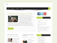 blogevet.com.br