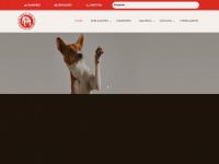 Kcep.com.br