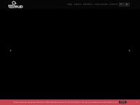 agenciabud.com.br