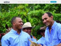 neloreveracruz.com.br