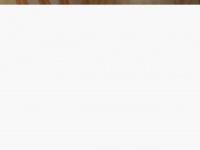 Laudostecnicos.com.br - Laudos Tecnicos, Economia de Energia, Medições eletricas
