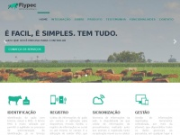 Flypec.com.br - Flync Tecnologia