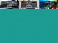 vmvs.com.br