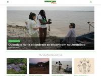 amazoniareal.com.br