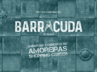 barracuda.pt