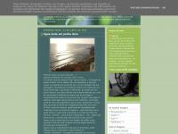 aviagemdesamuel.blogspot.com
