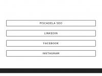 wellingtonjunior.com.br