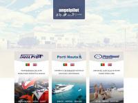 angelpilot.com