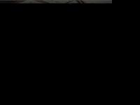 partena.com.br