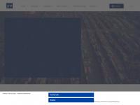 wmtrading.com.br
