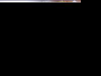 virtuacorretora.com.br