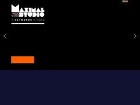 maximalstudio.com.br