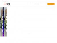 ruivooffice.com.br