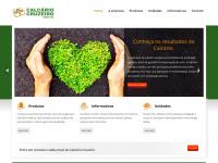 Calcariocruzeiro.com.br