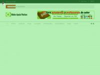 moldesinjecaoplasticos.com.br